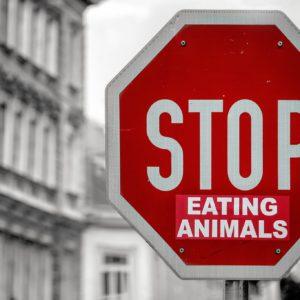 Różne oblicza niejedzenia mięsa – odmiany wegetarianizmu